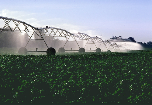 Irrigation à pivot central